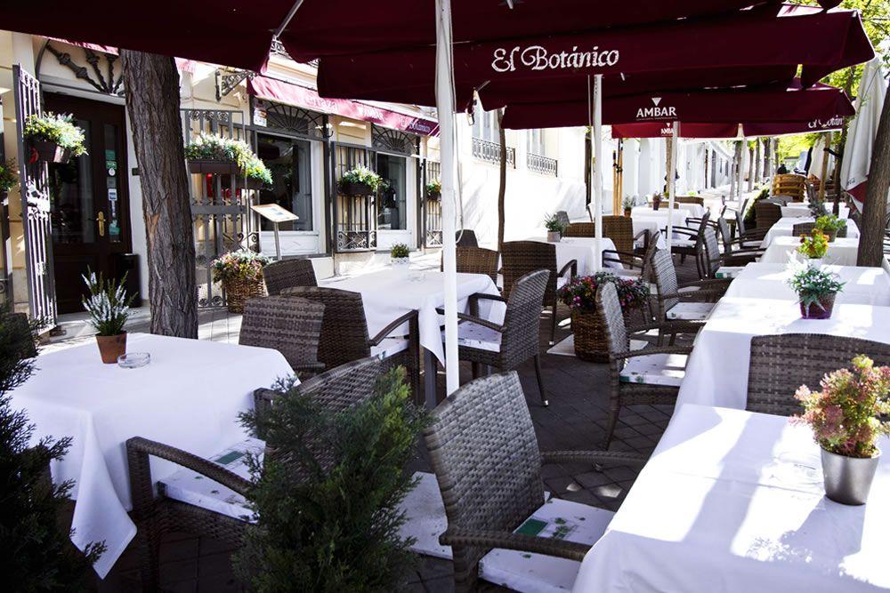 Restaurante El Botánico Terraza Madrid